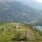 17/06/2018 Alle pendici orientali del Pizzo Nero