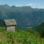 26/9/2021 Sui pendii del torrente Olocchia in Valle Anzasca tra Dorchetta e Drocaccia un'area wilderness